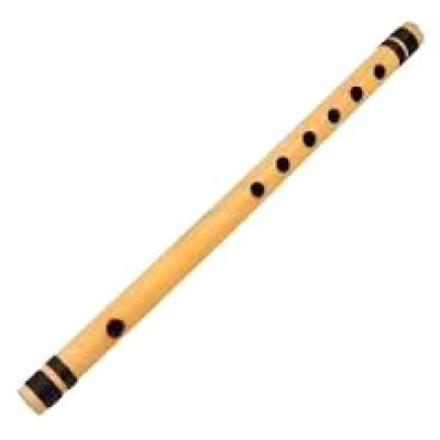 Buy concert performance Bansuri online music store cost discounts price shop India