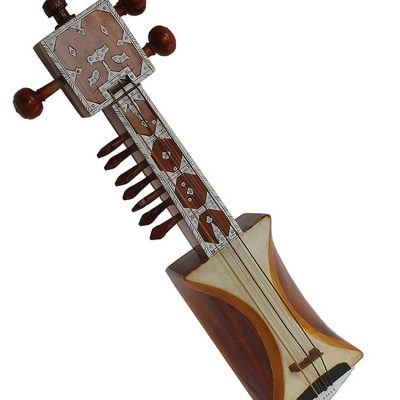 Purchase Sarangi musician instrument online store cost discounts price music shop India