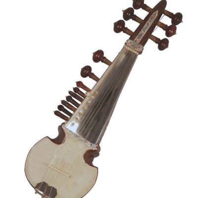 Buy Sarod beginner online music store cost discounts low price instruments shop India
