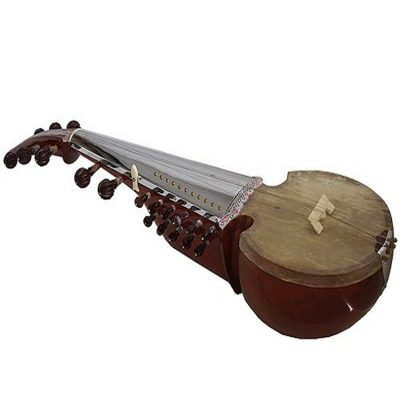 Buy professional Sarod instrument online music store cost discounts low price shop India
