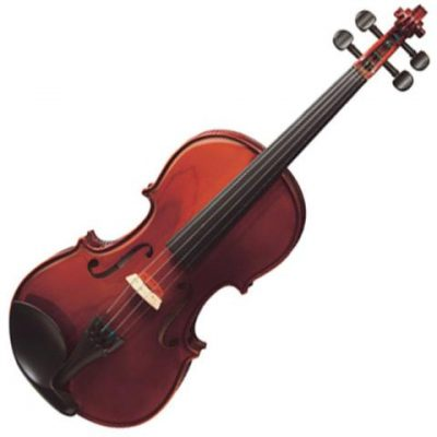 Buy professional Violin instrument online music store cost discounts low price shop India