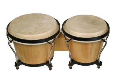 Buy Bongo for beginner student online music store cost discounts price shop India
