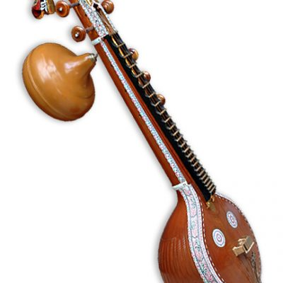Buy Veena professional instrument online music store cost discounts price shop India
