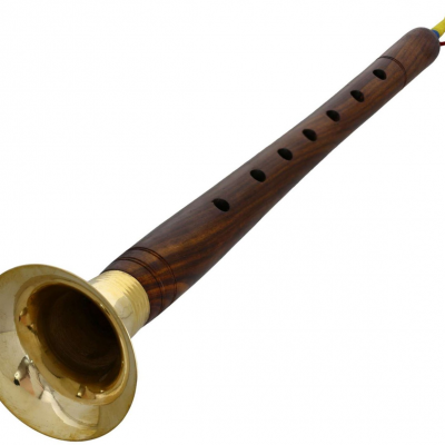 Buy Shehnai professional instrument online music store cost discounts price shop India